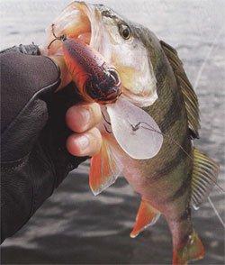 рыбалка на глубоководье