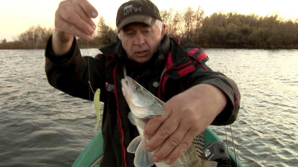 рыболовные программы видео